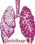 Lungs Counted Cross Stitch Kit (FSLNGS718)
